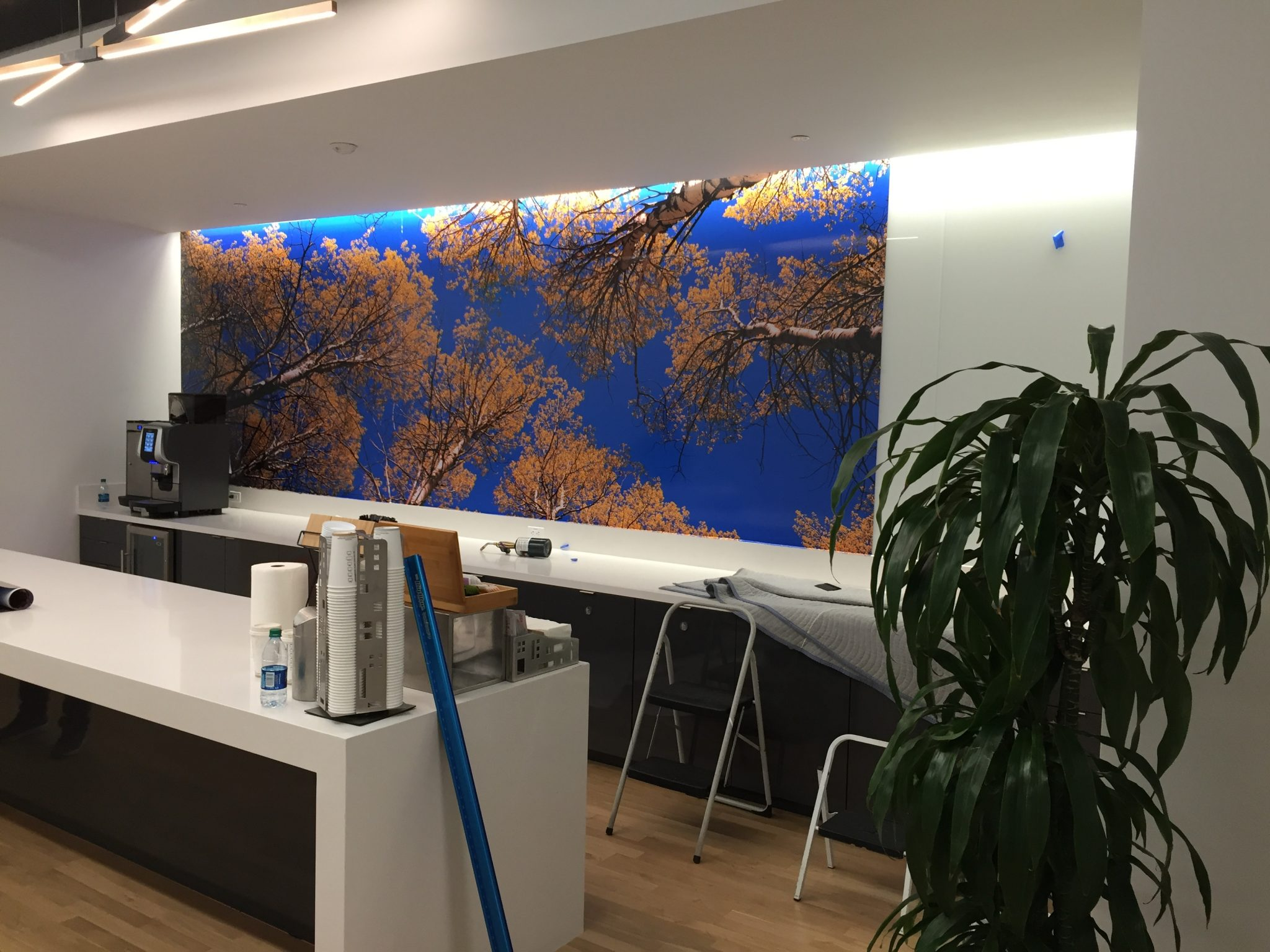 ... there will be creases, small rips, or bubbles that might make the mural appear unprofessional. If a Engaging Signs & Graphics installer places your ...